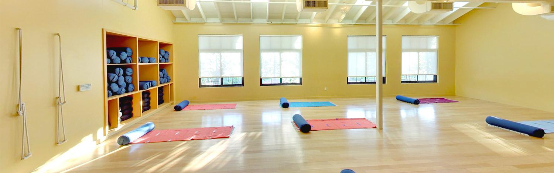 Larkspur Yoga session