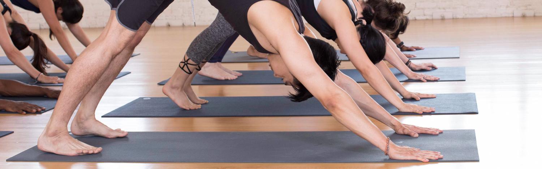 Hatha Yoga Class at YogaWorks