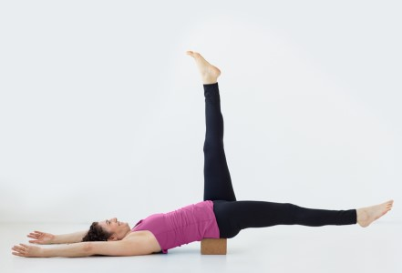Stacey Rosenberg will lead Explore Your Core: Three-Part Series, a 3-part core focused yoga workshop to be held February 8, March 14 + April 4 @ Yoga Tree SF Hayes in the San Francisco Bay Area.
